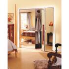 Erias Series 4900 36 In. W. x 80-1/2 In. H. Steel Frameless Mirrored White Bifold Door Image 1