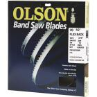 Olson 70-1/2 In. x 3/16 In. 10 TPI Regular Flex Back Band Saw Blade Image 1